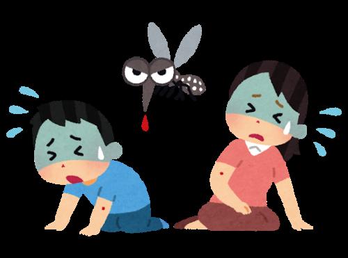 蚊の感染症予防について