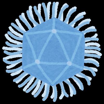 ウイルスの構造と増殖